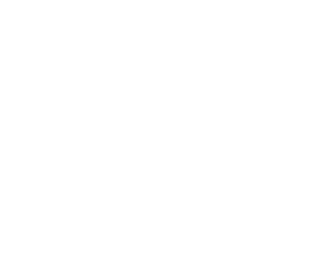 Butterfly_Footer-white